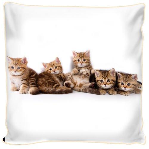 Poduszka Ozdobna Małe Kotki